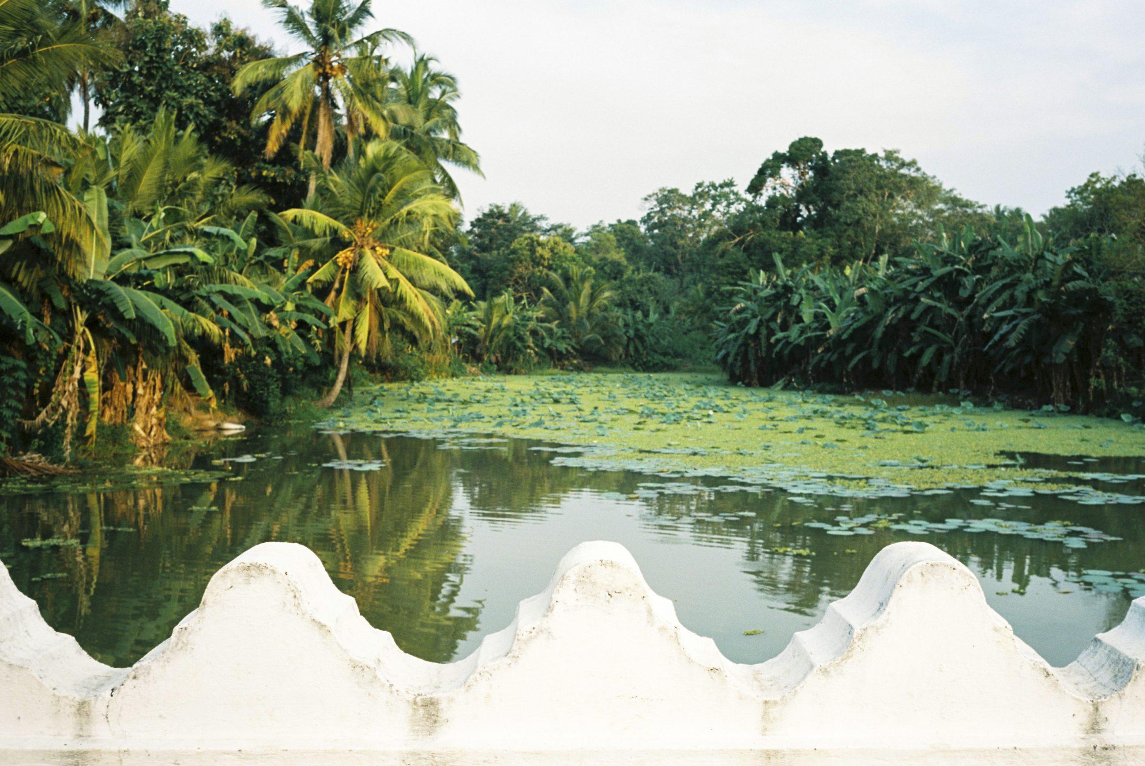 Sri Lanka on Film